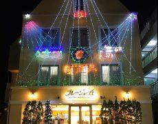 クリスマスまでの特別なイルミネーション